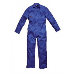 BUZO DICKIES WDE4819 ECONOMIC